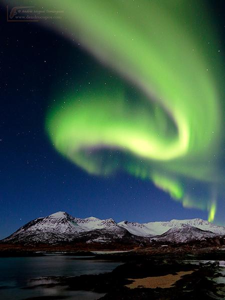 Aurora boreal, Senja