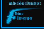 Andrés Miguel Domínguez – Fotografía de naturaleza - Fotografia de naturaleza y vida salvaje. Nature photography and wildlife images